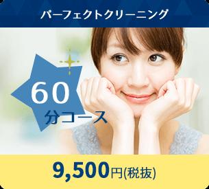 パーフェクトクリーニング 60分コース 9,500円(税抜)
