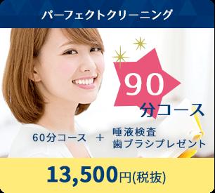 パーフェクトクリーニング 90分コース 13,500円(税抜)